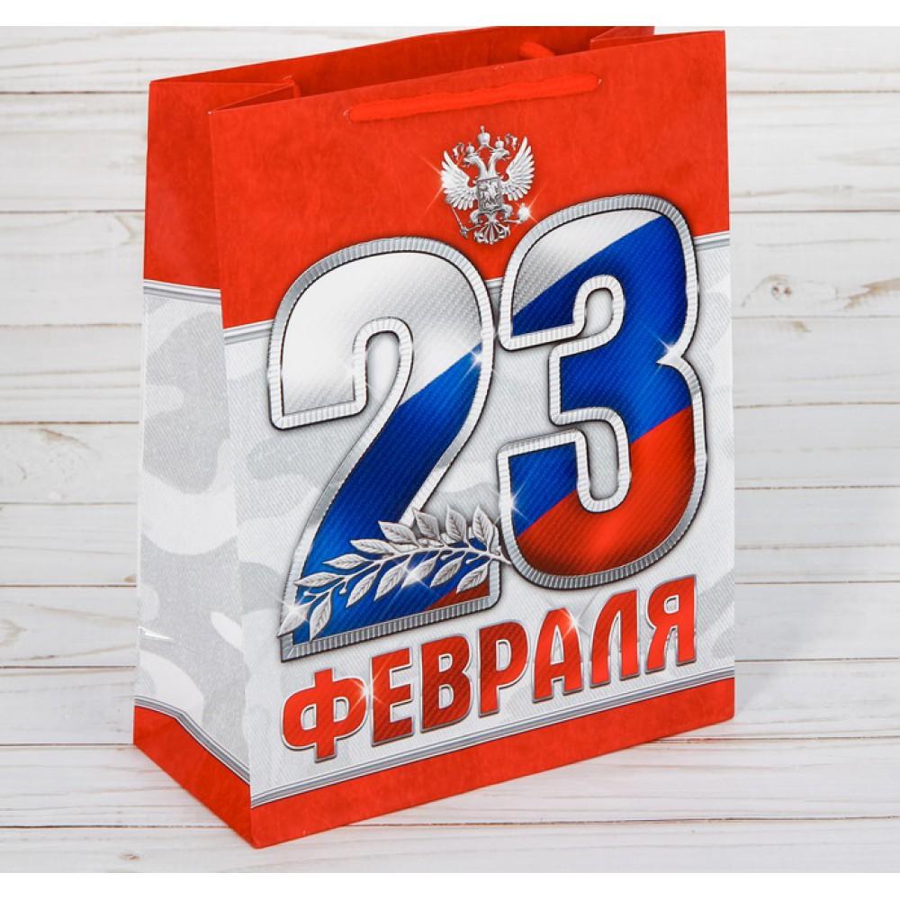 Пакет ламинированный вертикальный 23 февраля 23*27*8см